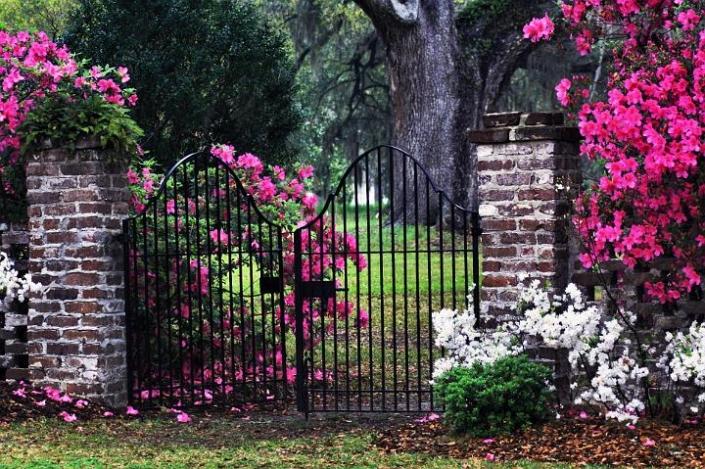 Gardens & Scenery