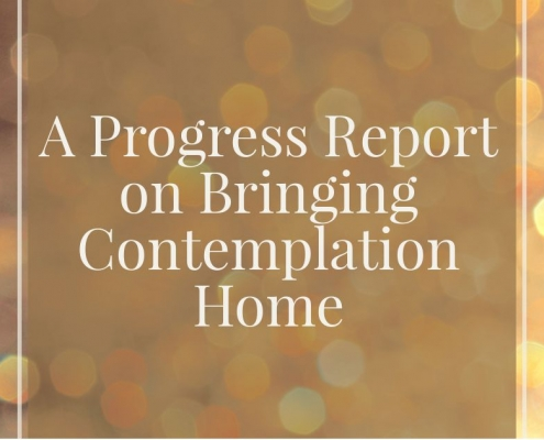 A Progress Report on Bringing Contemplation Home