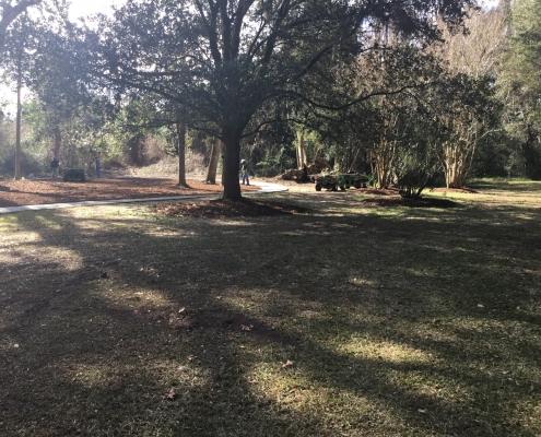 New Memorial Garden