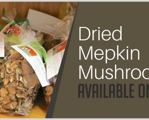 Dried Mepkin Mushrooms