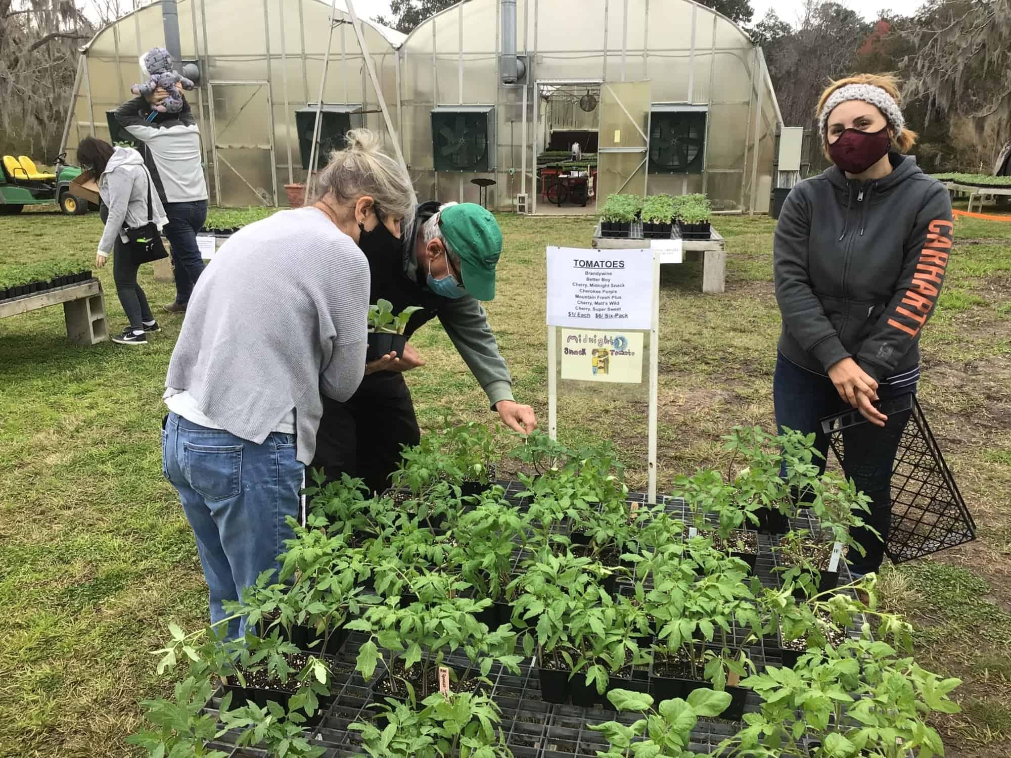 Saturday Plant Sale