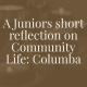 juniors reflection
